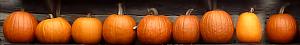 OrangeVeggies pumpkin