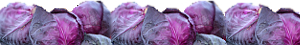 PurpleVeggies cabbage