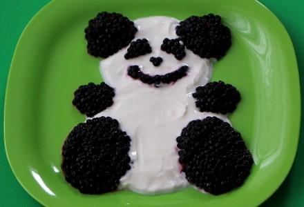 Panda_step2