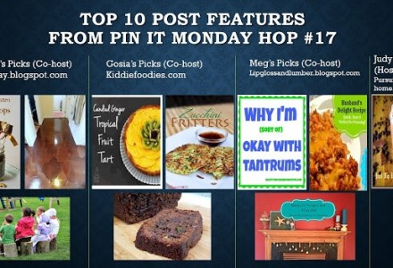 TOP 10 Project Features from Pin It MOnday Hop#17