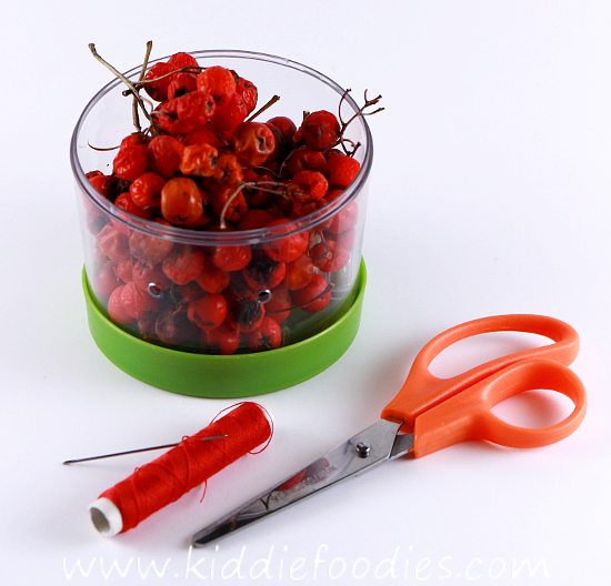 DIY rowanberry necklace - fine motor skills activity for kids step1b