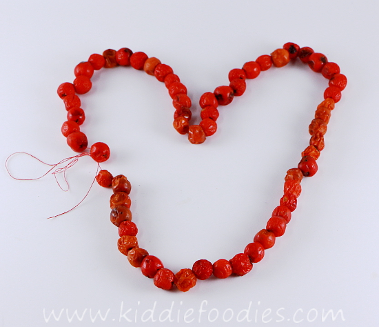 http://www.kiddiefoodies.com/wp-content/uploads/2013/10/DIY-rowanberry-necklace-fine-motor-skills-activity-for-kids-step3a.jpg
