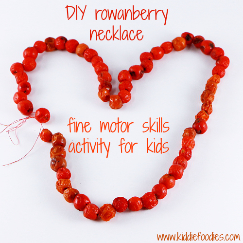 DIY rowanberry necklace - fine motor skills activity for kids