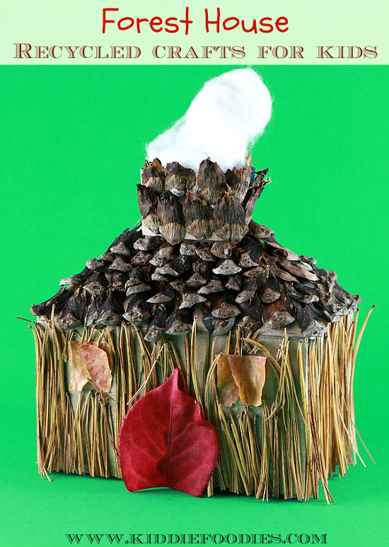 Recycled crafts for kids - forest house - tissue box, pine needles & cones, fall leaves main