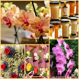 Lemon Festival Menton 2014 - orchid expo and local products