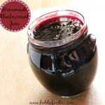 Homemade Blackcurrant Jam recipe