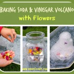 Baking Soda and Vinegar Volcano with Flowers