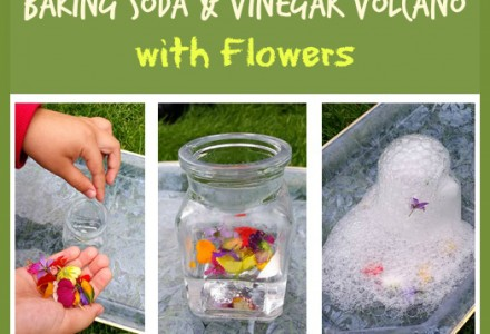 Baking Soda & Vinegar Volcano with Flowers