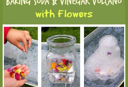 Baking Soda & Vinegar Volcano with Flowers